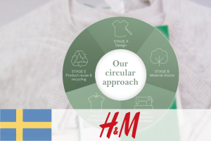 #12 H&M – Rethinking raw materials for fibre manufacture