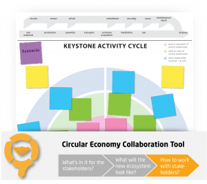 Keystone Activity Cycle